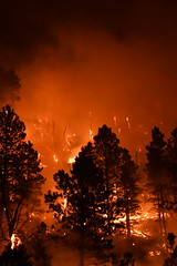 Legion Lake Fire 04 (SD Public Broadcasting) Tags: legion lake fire black hills south dakota wildfire forest sdpb custer state park w