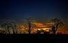 Rural night sky. (jacco55) Tags: infocus highquality ireland sky night ardgillan balbriggan skerries