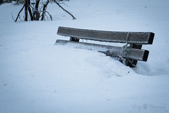 Bench in snow (Cloudtail the Snow Leopard) Tags: bank hornisgrinde schnee snow winter mountain schwarzwald black forest