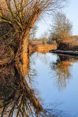 Canal at Cathiron Warwickshire 28th December 2017 (boddle (Steve Hart)) Tags: autumn boddle canon coventry hart kingdom natural nature seasons spring steve steven summer united weather wild wildlife wilds winter wyken canal cathiron warwickshire 28th december 2017 bruce wyke road kingdon england great britain 5d mk4 6d dji spark djispark bird birds flowers flower fungii fungus insect insects spiders butterfly moth butterflies moths creepy crawley brinklow unitedkingdom gb