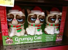 Grumpy Cat Christmas lights (l_dawg2000) Tags: