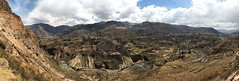 IMG_4498 (2) (massimo palmi) Tags: perù canyon colca condor colcacanyon cocariver arequipa colcavalley terrace terraces steppedterraces ande andeancondor