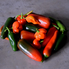Last pickings (johntmyers51) Tags: red orange green chilli peppers hot medium mild