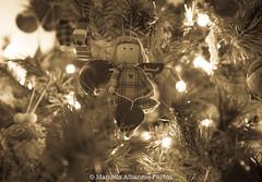 Xmas_2017 (manuela albanese) Tags: christmas xmasmood natale canon manuela albanese casa home boken animale albero relax homesweethome casadolcecasa ilmioalbero