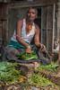 Marchand de bétel, Calcutta, Bengale occidental, Inde (Pascale Jaquet & Olivier Noaillon) Tags: bétel marchand portrait marché calcutta bengaleoccidental inde ind