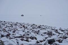 winter in Wisconsin (humbletree) Tags: madisonwisconsin winter snow warnerpark lakemendota icefishing