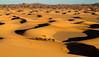Golden hour, Erg Chebbi (missfisher') Tags: sahara morocco desert ergchebbi goldenhour travel africa