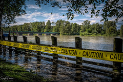BC Seasonal Flooding - Fraser River, Fort Langley (SonjaPetersonPh♡tography) Tags: fraserriver fraservalley marinapark bc britishcolumbia waterfront canada nikon nikond5200 warnings provinceofbc floods flooding riverbank spring snowmelt rain heavyrain seasonalflooding bcseasonalflooding advisories caution water river