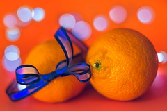 Holidays tangerines (Hanna Tor) Tags: macromonday orangeandblue color bokeh holiday table kitchen tangerine mandarin fruits food