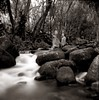 In a tropical stream (efo) Tags: people river stream hawaii kauai haena blur longexposure ricohflex film bw