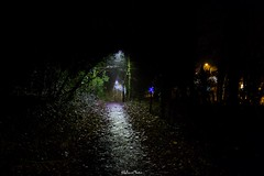 Public Footpath, Coulsdon, London Borough of Croydon (LFaurePhotos) Tags: cr5 coulsdon londonboroughofcroydon londonbynight streetsoflondon lfaurephotos southeastlondon surrey