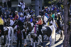 Horse People (Thad Zajdowicz) Tags: zajdowicz pasadena california roseparade 2018 usa outdoor outside canon eos 5dmarkiii 5d3 digital dslr color colour festive availablelight lightroom ef70200mmf4lisusm horses animal fauna people men women parade street urban