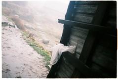 000057 (Kho ảnh trip của Hải) Tags: canoneos500n sapa fansipan fujifilm trip