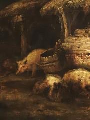 OSTADE Isaac,1640 - La Porcherie (Louvre) - Detail -b (L'art au présent) Tags: art painter peintre details détail détails detalles painting paintings peintures peinture17e 17thcenturypaintings peinturehollandaise dutchpaintings dutchpainters peintreshollandais tableaux paris musée museum france holland hollande animal animaux animals pig pigs cochon cochons piggery pigsty isaack