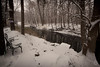 First Snow (brianloganphoto) Tags: hudsonvalley orangecounty newyork outdoor landscape conditions warwick snow unitedstates us