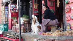 Waiting for customers (as seen in Explore) (posterboy2007) Tags: nepal dog street shop vendor bhaktapur