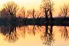 2017-12-03-Lodi-Soltarico-IMG_8331 (enibell) Tags: soltarico acqua fiumeadda lanca morta tramonto