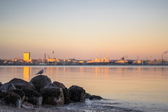 Sunset in the city (A.Dissing) Tags: sunset city scape reflection landscape sequel happi happiness life orange magenta multicolor magic magical clear århus a7ii anders a7 amazing adventure awesome a7m2 artistic art