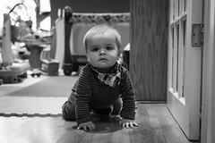 Will - 10.75 months old (Katherine Ridgley) Tags: toronto torontobaby baby babyboy cutebaby crawl crawling moving move indoor indoors house home play toy babytoy blackwhite blackandwhite monochrome