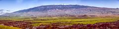 Snow Atop Mauna Kea Summit Panorama December 23, 2017 (JUNEAU BISCUITS) Tags: nikon nikond810 nightphotography hawaii waimea kamuela bigisland hawaiiphotographer bigislandphotographer panorama pano maunakea maunakeasummit