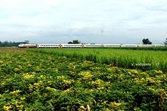 Brantas 7032 Tambahan (Edy Widiyanto) Tags: kereta api indonesia pt tulungagung plb klb natal tahun baru brantas tambahan ngantru ngujang stasiun