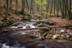 Ilsefälle / River Ilse (sebastianhüttler) Tags: lumixg6 panasonic wald fluss wasserfall harz ilsefälle landscape germany river water forrest waterfall deutschland