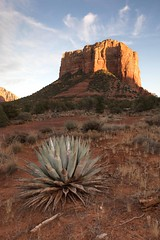 Agave & Courthouse Butte (Edmonton Ken) Tags: courthouse arizona sedona sunset agave plant red cloud sky dirt rock butte