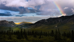 Gold in the Hills (James Duckworth) Tags: alaska jamesduckworthphotography clouds dappledlight fineartphotography landscape meadow moody nobody rainbow ridge ridges scenic sky trees