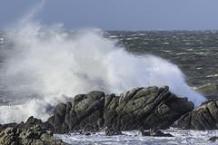 tempete cote sauvage (denis49) Tags: 7dmark2 tempête cotesauvage lecroisic mer