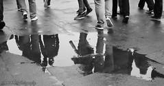 Off to the match. (The friendly photographer.) Tags: britain blackwhite blackandwhite bw biancoenero beauty brilliant blancoynegro blanco blancoenero candid d7100 dark england enblancoynegro ennoiretblanc flickrcom flickr football google googleimages gb greatbritain greatphotographers greatphoto image inbiancoenero interesting excellentphoto leeds leedsunited mamfphotography mamf monochrome nikon nikond7100 noiretblanc noir northernengland negro north onthestreet photography photo pretoebranco photograph photographer people road schwarzundweis schwarz street uk unitedkingdom upnorth united urban reflection reflections voetbal water wet westyorkshire yorkshire zwartenwit zwartwit zwart ellandroad ellandroadstadium