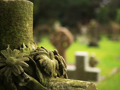 Every end has a start - Wk 1/52 2018 (fstop186) Tags: grave memory end start bokeh olympusem1 portsmouth week1201852weeksin2018weekstartingmondayjanuary012018 week1theme cemetery headstone cross
