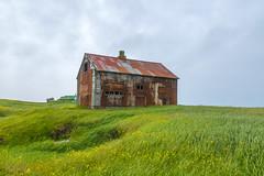 Abandoned house in Hvassahraun, Iceland (thorrisig) Tags: 14072017 himinn hvassahraunryð hús gamalt dorres sigurgeirsson sigurgeirssonþorfinnur thorrisig thorfinnursigurgeirsson thorri þorrisig thorfinnur þorfinnur þorri þorfinnursigurgeirsson iceland ísland island abandonedhouse eyðibýli