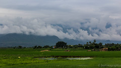 ALWARKURICHI (Jayfotographia) Tags: alwarkurichi tirunelveli tamilnadu india nature incredibletamilnadu mountains sky clouds greenery paddyfields agriculture life monsoon canon canoneos1200d jayasankarmadhavadas jayfotographia photography