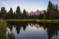 Grand Teton NP, USA, Schwabachers Landing, sunrise (birgitmischewski) Tags: schwabacherslanding grandtetonnp grandtetonrange reflection mountains pond grandtetonnationalpark