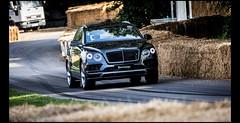 Bentley Bentayga Diesel (2017) (Laurent DUCHENE) Tags: goodwoodfestivalofspeed motorsport car fos 2017 bentley bentayga diesel