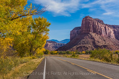 Utah State Route 211 In Indian Creek National Monument (Lee Rentz) Tags: bearsears bearsearsnationalmonument canyonlandsnationalpark fremontcottonwood indiancreek indiancreekcorridorscenicbyway indiancreeknationalmonument needlesdistrict obama populusfremontii sr211 theneedles us191 america american asphalt autumn blacktop blm bureauoflandmanagement canyon canyonlands canyons cars cliffs climbing color cottonwood curve curving destination fall flora golden highway horizontal landscape moab needles northamerica park paved pavement plant recreation road rock rocks route southernutah travel traveling trees trump usa utah vehicles west western winding yellow yellowline