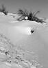 Pattes de loup (ZUHMHA) Tags: bulgarie bulgaria hiver winter snow landscape horizon tree buzludja campagne campain nature trace pas