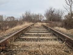 railway8 (Dreamaxjoe) Tags: vasút celldömölk iparvágány elhagyatott railway outofservicerailroadtrack aftersunrise napfelkelteután