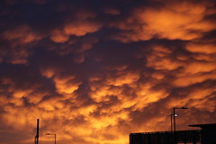 Sunrise over Sheffield (Neil M Cross) Tags: