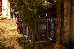 Belén ✹ Valencia [2017] (Carlos Gonga) Tags: belén belenistas nativityscene nativityscenemakers arte art miniatura miniature miniaturas miniatures artesanal artisan crafts handicrafts hechoamano handmade detalles details maqueta model corral chicken gallinas valencia valenciaciudad comunitatvalenciana