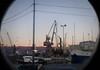 Par la lucarne le matin (8pl) Tags: lucarne matin lumièredumatin grues rijeka croatie botel voitures port adriatique maritime