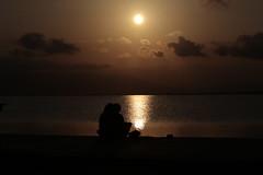 _MG_7368 (angelalonso4) Tags: canon sun sunset orange sea beach people himmel meer gava sunlight ef 90mm tabarnia f32 couple outside ciel eos 6d tamron sp f28 di vc usd macro11 f004 ƒ320 900 mm 1400 100 自然 wateraguaseamar
