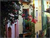 Façades fleuries partout à Collioure - Explore 22/12/1017 (bleumarie) Tags: automne2017 côtevermeille mariebousquet mididelafrance novembre2017 perlecatalane photomariebousquet suddelafrance zonetouristique automne bleumarie catalogne collioure méditerranée méridional mer midi pyrénéesorientales roussillon sud tourisme village fleur floral fleuri plantegrimpante façade façadefleurie nature flore verdure végétation vert feuille porte fenêtre balcon ferforgé bleu jaune couleur coloré coloris végétal ruelle venelle explore explore22122017