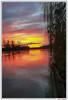 Scène de bord de Seine (imaGilaire) Tags: carrièressurseine seine couché soleil calm water sunset river 78 imagilaire 2018