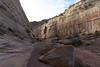 Into Crack Canyon (Brandon Rasmussen) Tags: utah crackcanyonwildernessstudyarea wsa desert americansouthwest southwest nature landscape hiking wilderness sanrafaelswell