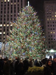 2017 Christmas Tree Rockefeller Center 5039 (Brechtbug) Tags: 2017 christmas tree rockefeller center with lights 12162017 nyc 30 rock new york city standing up above ice rink snow shoveling workers skating holiday decoration ornaments night lites light oversize load ornament midtown manhattan