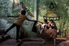 Varanasi 2017 (Ravikanth K) Tags: 500px kids girl children outdoor green street travel varanasi kasi india uttarpradesh lightandshadow goat babygoat two playing fun takingcare shiva wallpainting cwc chennaiweekendclickers cwc623 people
