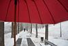Sotto l'ombrello - Under the umbrella. (sinetempore) Tags: sottolombrello undertheumbrella neve snow parcodelvalentino torino turin street uomo man ombrellorosso redumbrella alberi trees tronchi trunks freddo cold
