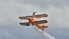 Wing Walker (Andrew-Jackson) Tags:
