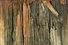 the tale of wood (M00k) Tags: zeeland colijnsplaat harbour texturen word